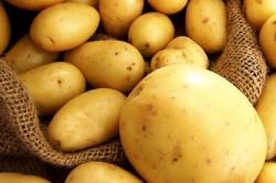 Картофель при заложенности носа