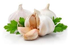 Польза чеснока для лечения ринита