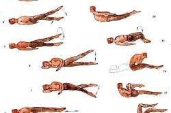 Комплекс упражнений на вытягивание позвоночника