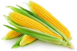Лекарства на основе кукурузы
