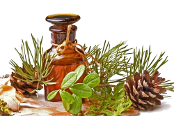 Масло для лечения насморка