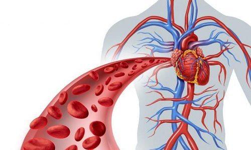 У беременной женщины отмечаются изменения венозного кровотока, что может приводить к застойным явлениям
