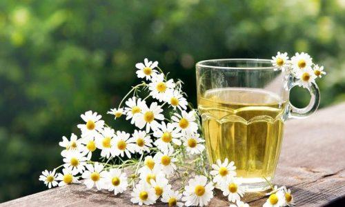 В народной медицине для лечения заболевания употребляют чай с ромашкой