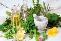 Лечебные травы против остеохондроза