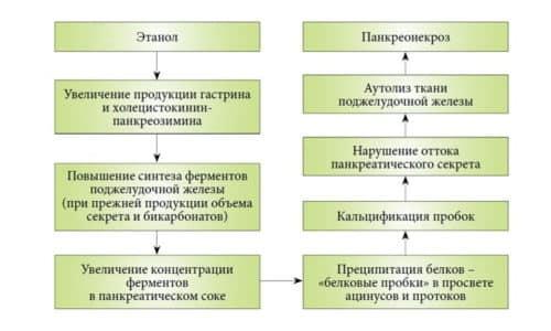 Схема возникновения панкреонекроза при попадании в организм этанола