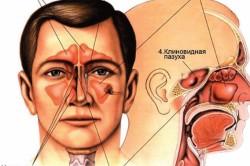 Основные причины насморка и заложенности носа