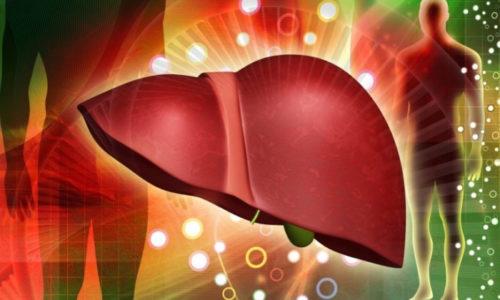 Печень - это внутренний орган человека. Она неприхотлива, способна выдерживать значительные нагрузки и восстанавливаться в короткие сроки