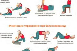 Комплекс упражнений для грудного и поясничного отделов позвоночника